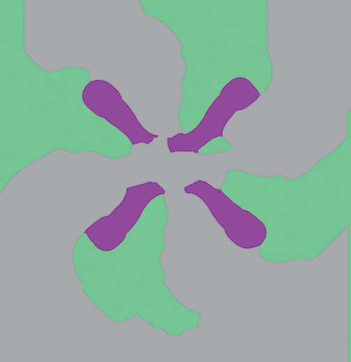 الجمعية التعاونية للمعارض والمؤتمرات - براق